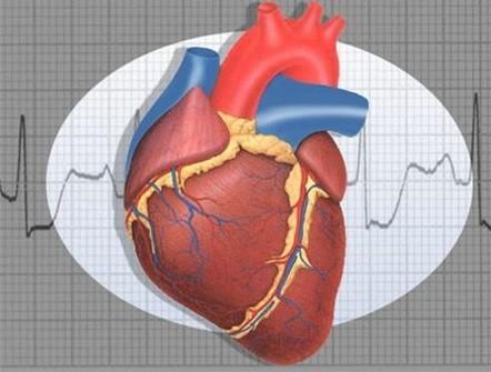 Невроз сердца: что это такое причины симптомы лечение последствия болезни
